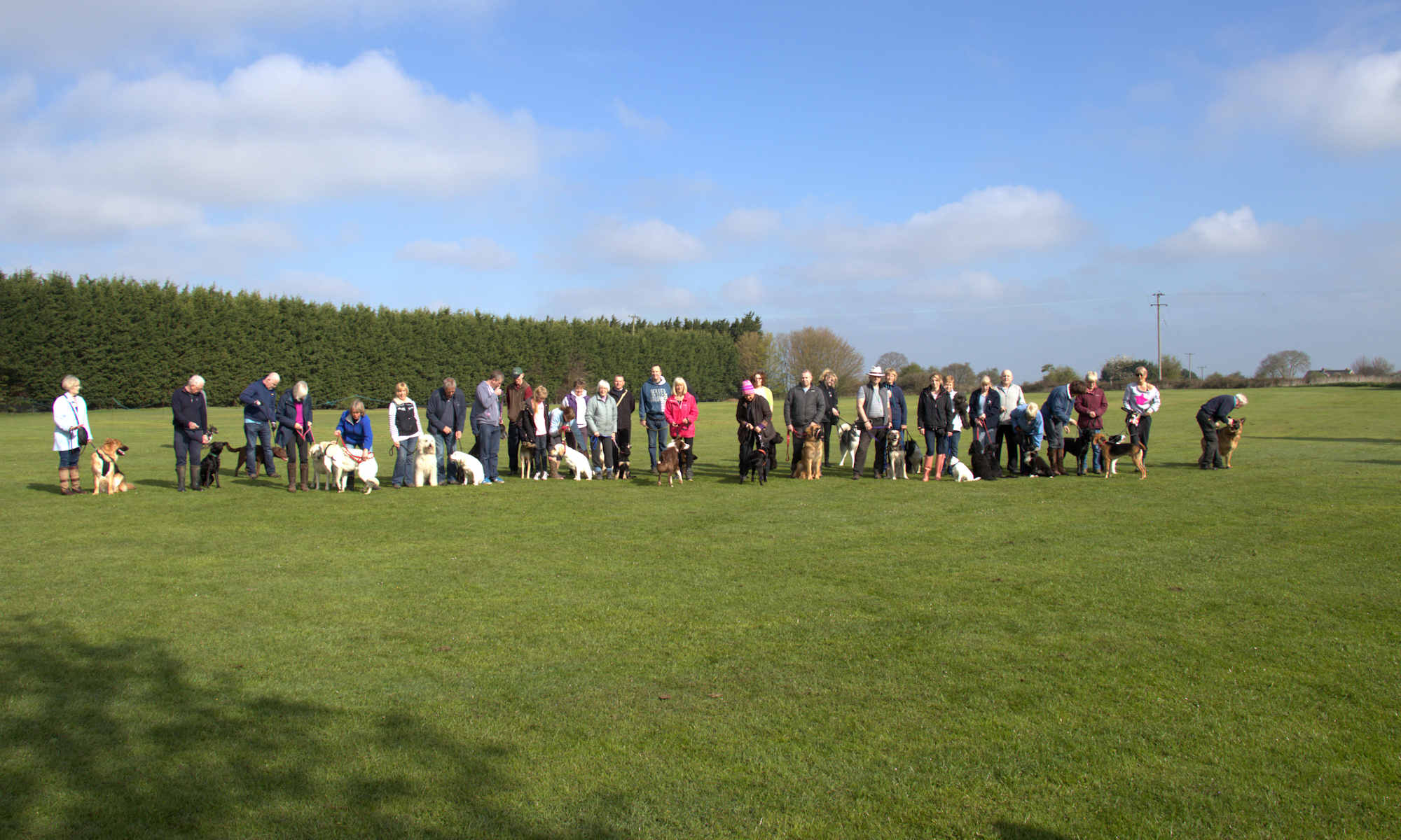 Stockbury Dog Club