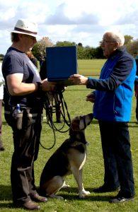 Most improved rescue dog presentation