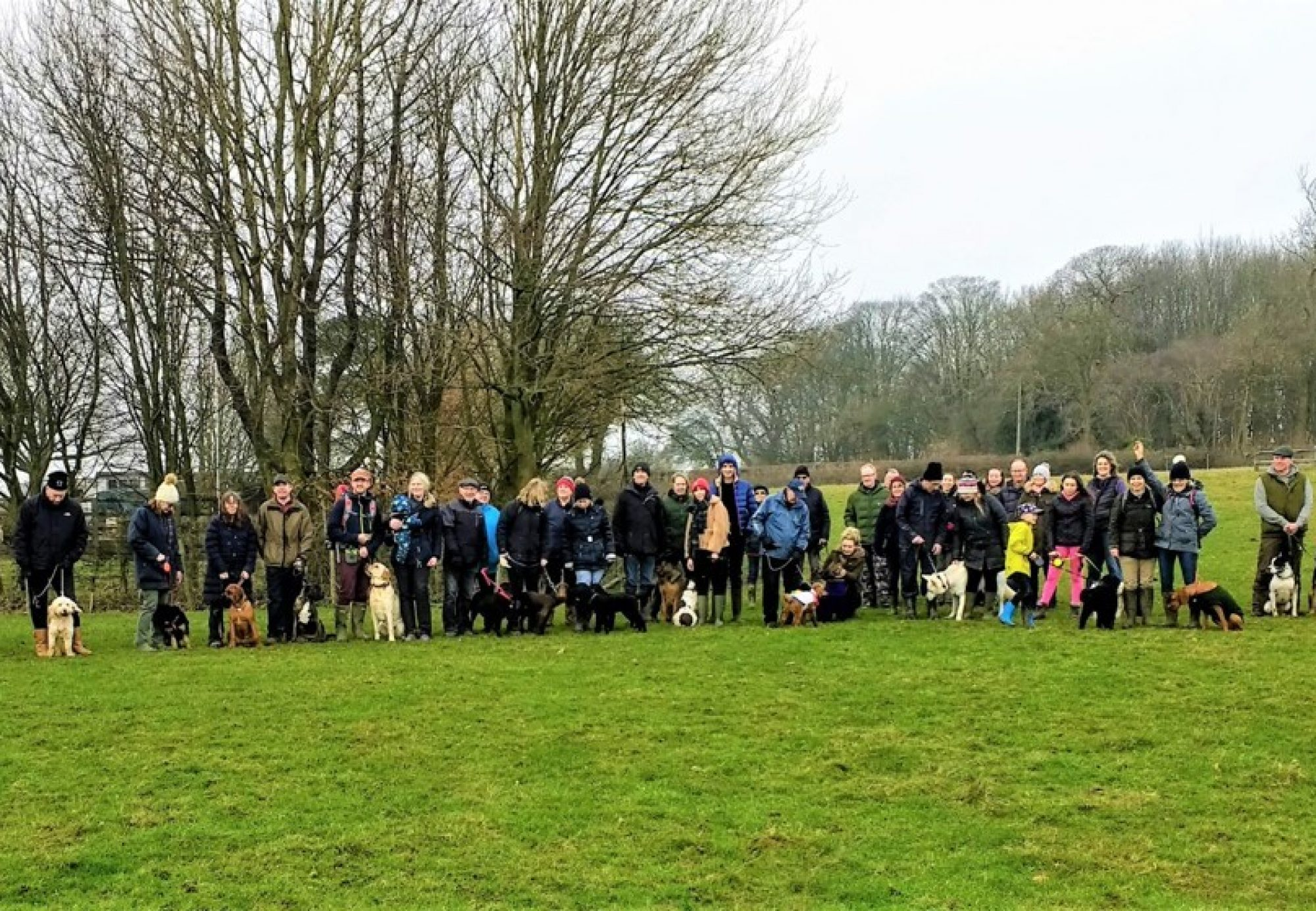 Stockbury Dog Club